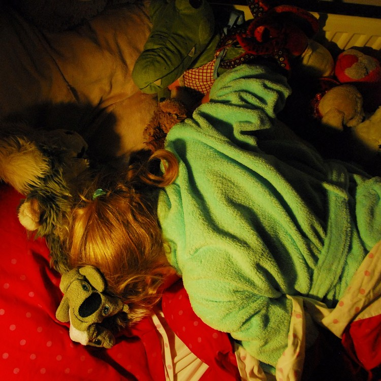 Nola slaapt